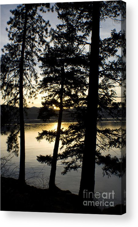 Trees Acrylic Print featuring the photograph Trees By The Lake by Idaho Scenic Images Linda Lantzy