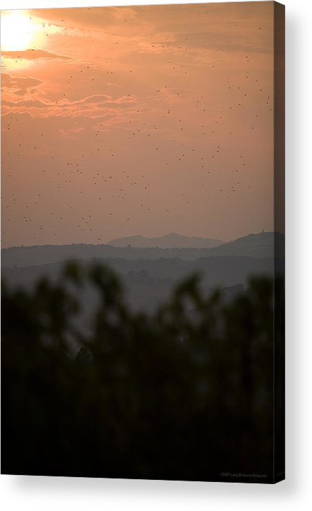 Italy Acrylic Print featuring the photograph Tuscany Sunset 1 by Luigi Barbano BARBANO LLC