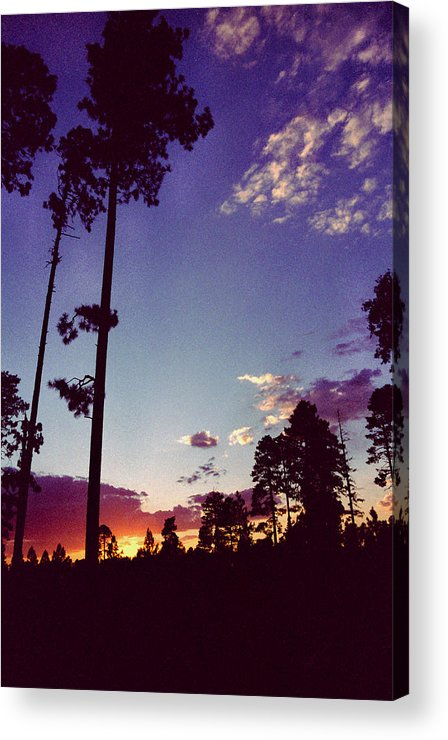 Arizona Sunset Acrylic Print featuring the photograph Two Pines Sunset by Randy Oberg