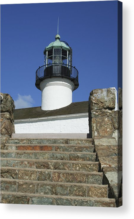 Bay Acrylic Print featuring the photograph Up To The Light by Margie Wildblood