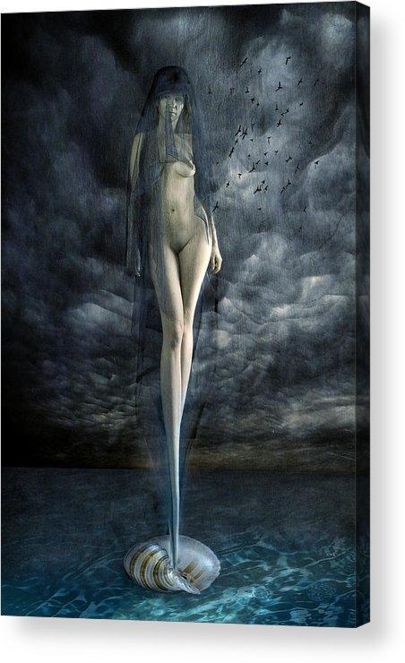 Acrylic Print featuring the photograph Venus Noir by Zygmunt Kozimor