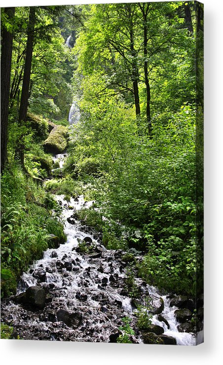 Waterfall Acrylic Print featuring the photograph Wahkeena Falls In  Oregon by John Rowe