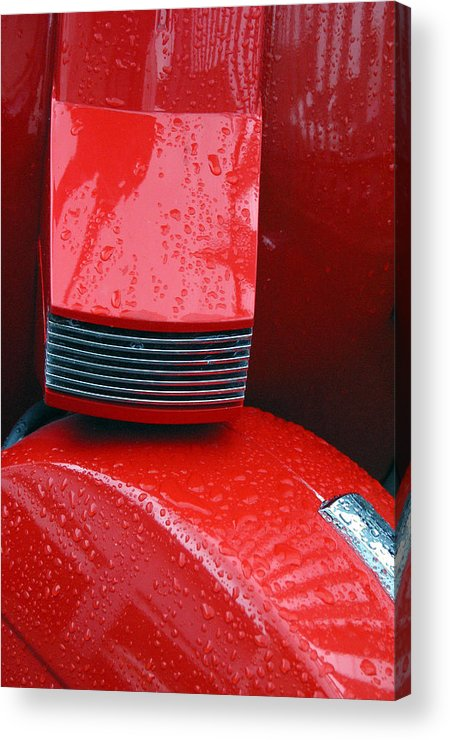 Photographer Acrylic Print featuring the photograph Wasp 2 by Jez C Self