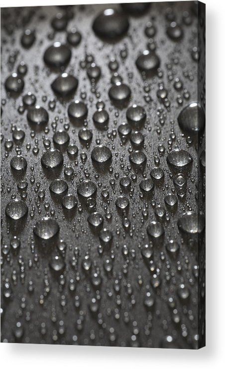 Frank Tschakert Acrylic Print featuring the photograph Water Drops by Frank Tschakert