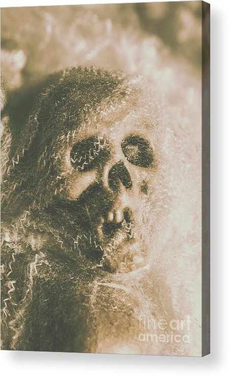 Bone Acrylic Print featuring the photograph Webs And Dead Heads by Jorgo Photography - Wall Art Gallery