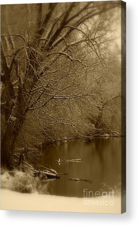Winter Acrylic Print featuring the photograph Where The Otters Play by Carol Groenen