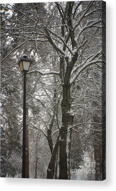 Lamp Acrylic Print featuring the photograph Winter Lamp Post by Idaho Scenic Images Linda Lantzy
