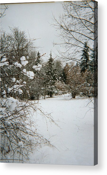 Snow Acrylic Print featuring the photograph Winter Silence by Valerie Josi