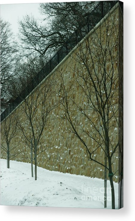 Grand Rapids Acrylic Print featuring the photograph Your Line Of Direction by Linda Shafer