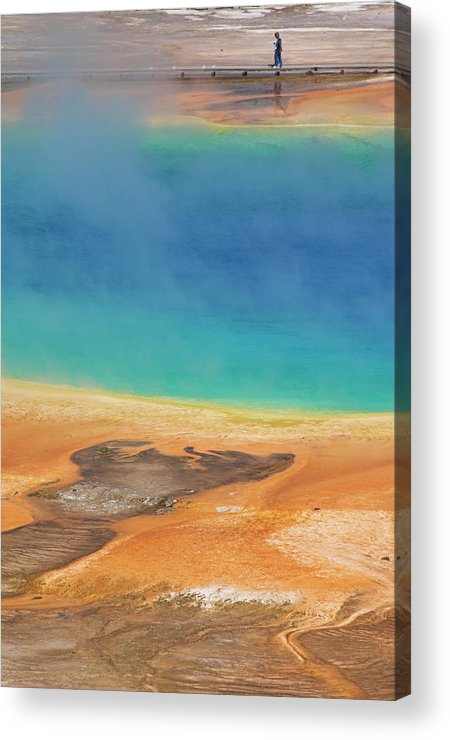 Tranquility Acrylic Print featuring the photograph Grand Prismatic Spring, Midway Geyser 1 by Neale Clark / Robertharding