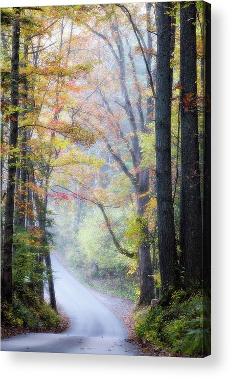 Appalachian Acrylic Print featuring the photograph A Canopy Of Autumn Leaves by Lana Trussell