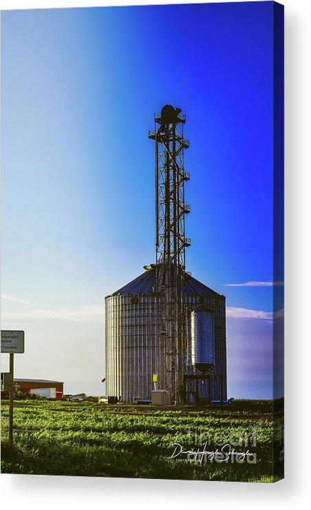 Grain Bin Acrylic Print featuring the photograph Kansas Elevator by Dawn Hough Sebaugh