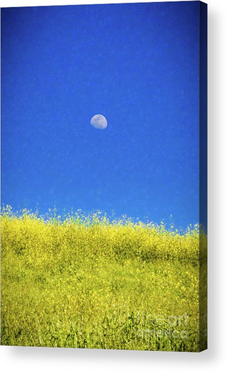 San Clemente Acrylic Print featuring the photograph Moonfield by Stefan H Unger