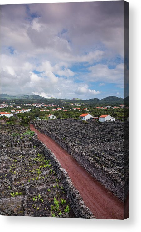 Azores Acrylic Print featuring the photograph Portugal, Azores, Pico Island, Madalena by Walter Bibikow