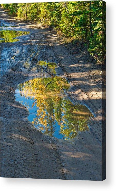 Reflections Of The Fall Acrylic Print featuring the photograph Reflections Of The Fall by Cathy Mahnke