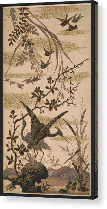 Crane Acrylic Print featuring the pyrography Cranes And Birds At Pond 1880 by Daniel Hagerman