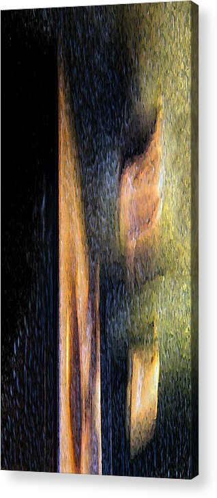 Abstract Acrylic Print featuring the photograph Form And Shadow by Murray Bloom