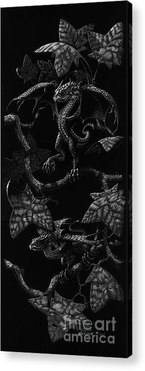 Dragon Acrylic Print featuring the drawing Snap Dragons by Stanley Morrison