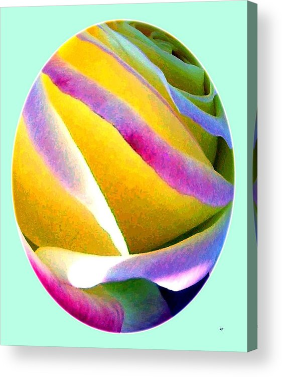 Abstract Rose Oval Acrylic Print featuring the digital art Abstract Rose Oval by Will Borden
