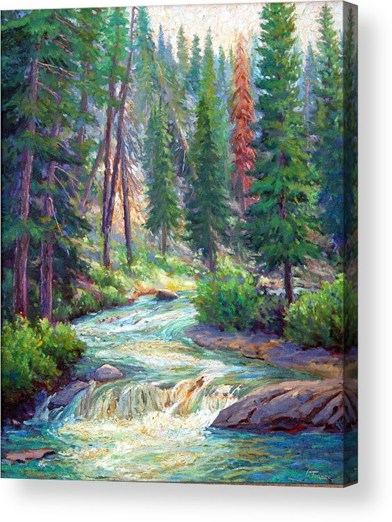 Mountains Acrylic Print featuring the painting Sparkling Stream by Douglas Turner