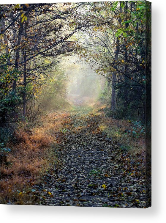 Rail Trail Acrylic Print featuring the photograph The Paulinskill Trail By James Figielski by Paulinskill River Photography
