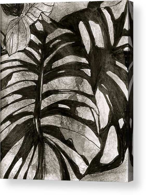 Black & White Botanical Art Acrylic Print featuring the drawing Hostas Version II by Claudia Smaletz