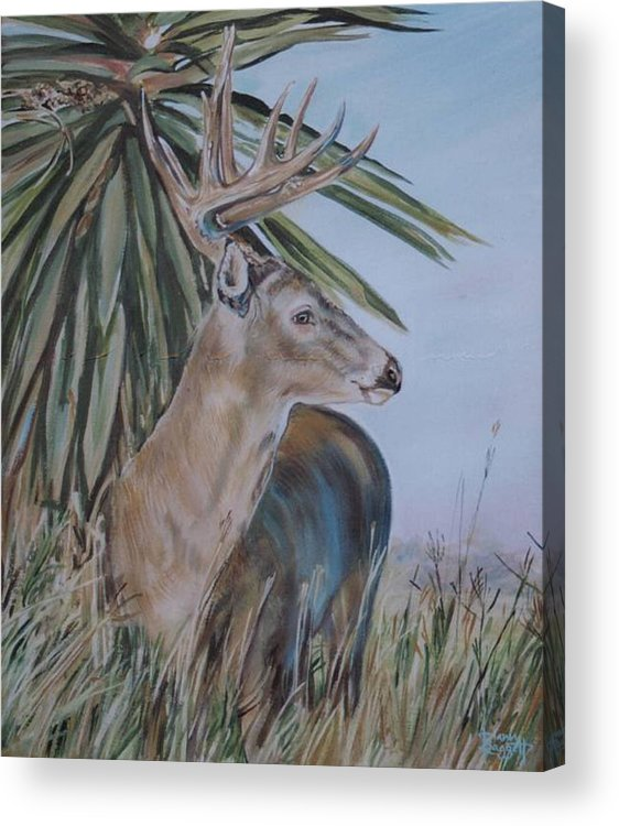 Animal Acrylic Print featuring the painting Berry Buck by Diann Baggett