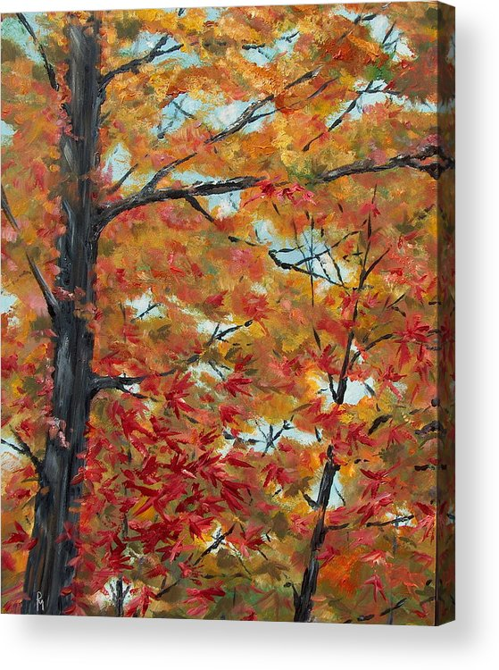 Fall Foliage Acrylic Print featuring the painting Looking Up by Pete Maier