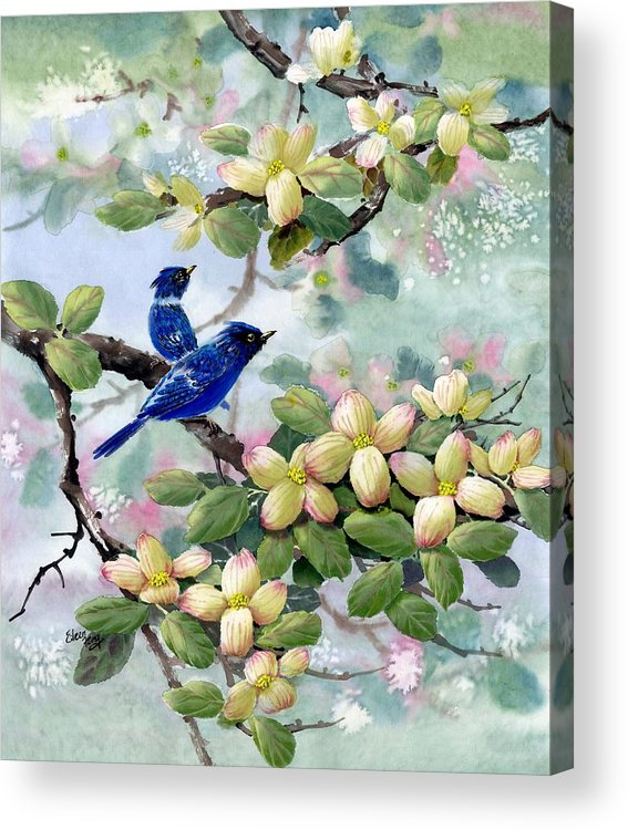 Blue Jays Acrylic Print featuring the painting A Touch Of Pink On White by Eileen Fong