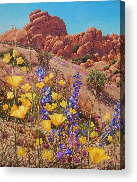 Desert Acrylic Print featuring the painting Blooming Desert by Johanna Girard