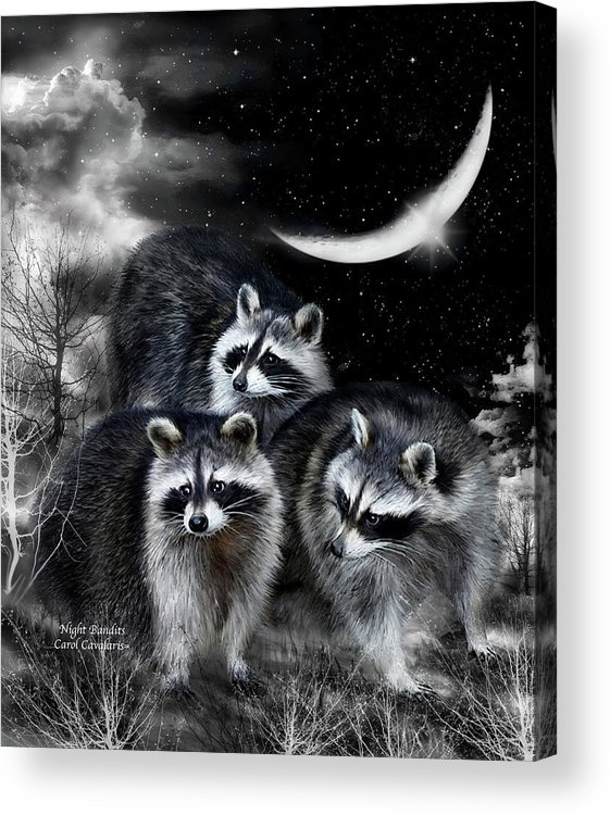 Raccoon Acrylic Print featuring the mixed media Night Bandits by Carol Cavalaris
