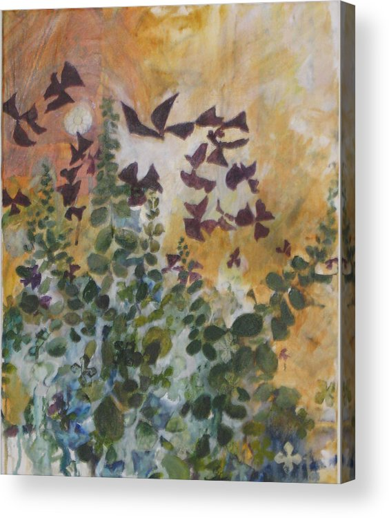 Oxalis Acrylic Print featuring the mixed media Oxalis by Alicia Kroll