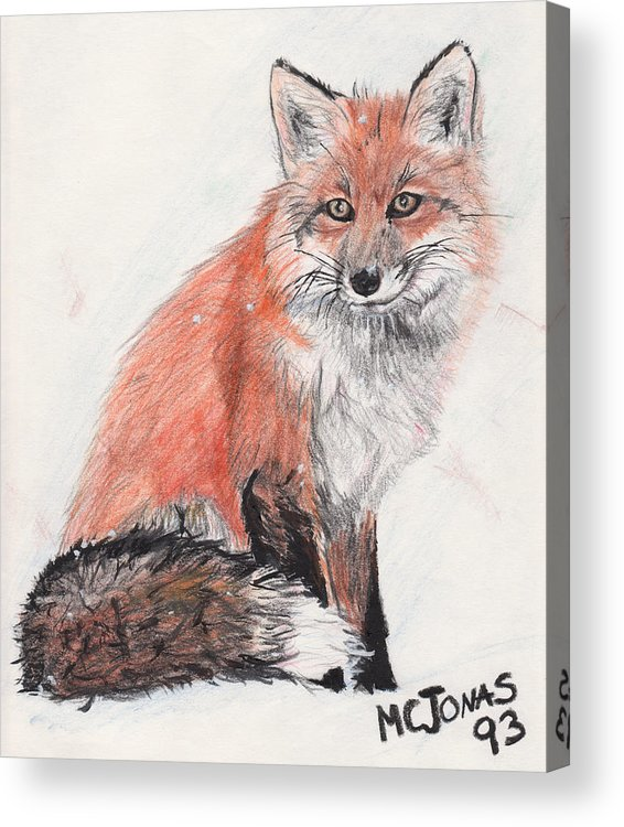 Red Fox Acrylic Print featuring the drawing Red Fox In Snow by Marqueta Graham