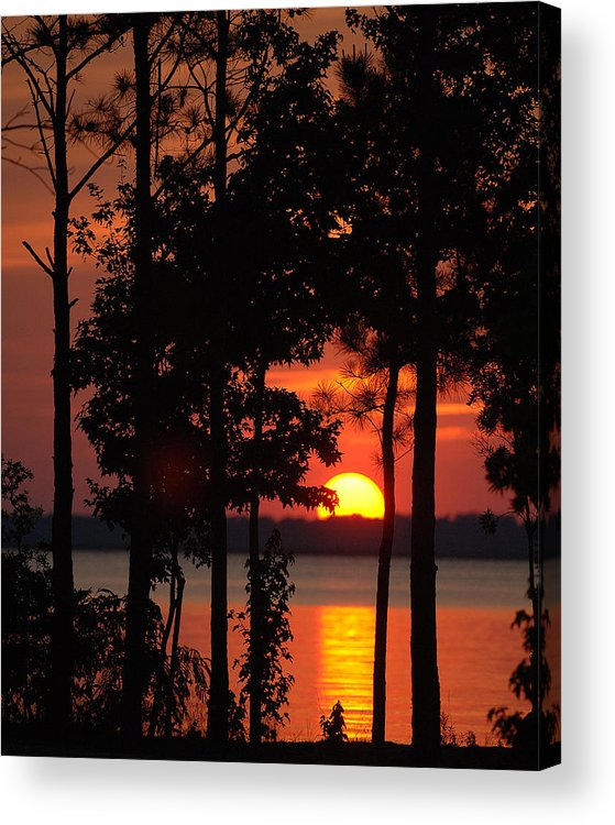 Sunset. Trees Acrylic Print featuring the photograph Summer Sunset by Travis Aston