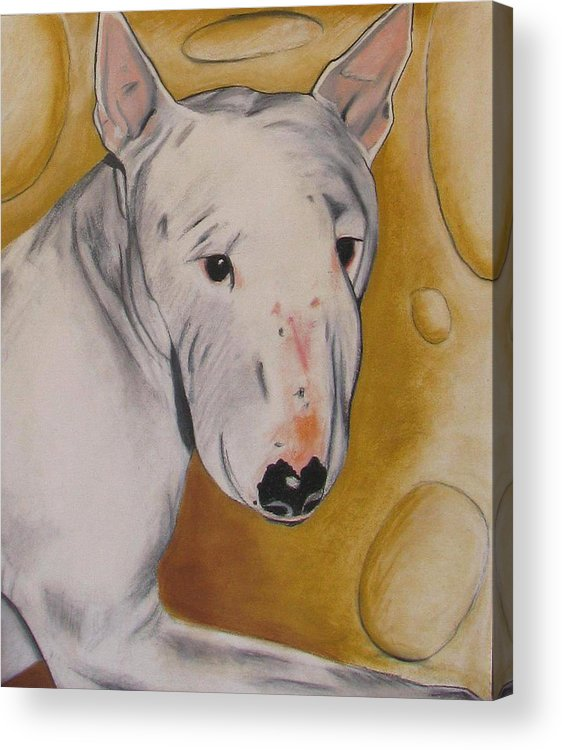 Dog Painting Acrylic Print featuring the pastel Zoe by Michelle Hayden-Marsan
