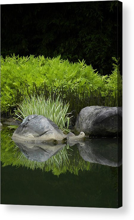Water Acrylic Print featuring the photograph Balance by Deborah Gallaway