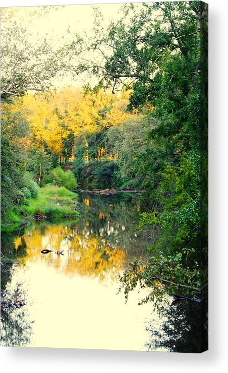 River Acrylic Print featuring the photograph Chunky River Reflections by Lisa Johnston
