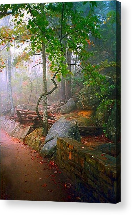Cumberland Gap Acrylic Print featuring the photograph To The Pinnacle by Julie Dant