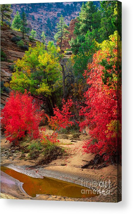 America Acrylic Print featuring the photograph After The Flood by Inge Johnsson