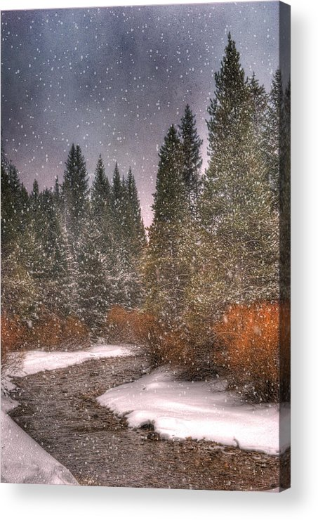 Beautiful Acrylic Print featuring the photograph Colours Of Winter by Juli Scalzi