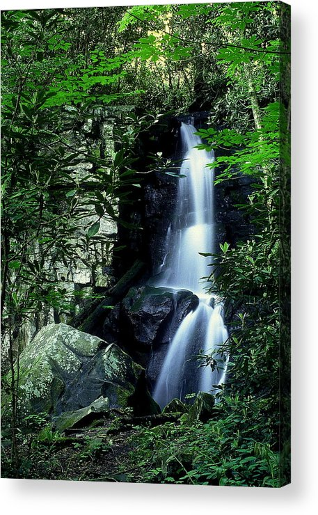 Fine Art Acrylic Print featuring the photograph Deep In The Mountains by Rodney Lee Williams