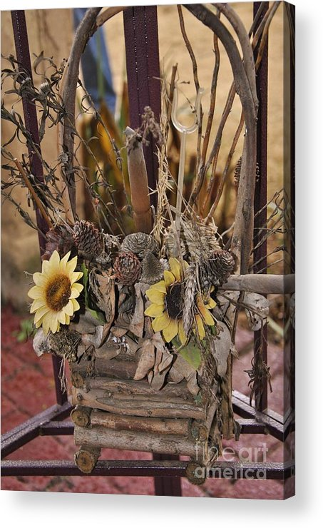 Dried Flowers Acrylic Print featuring the photograph End Of Life by Herman Cloete