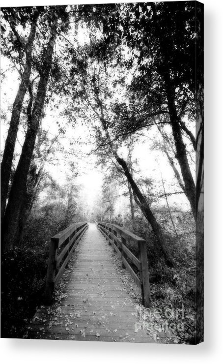 Photography By Floyd Menezes Acrylic Print featuring the photograph Into The Unknown by Floyd Menezes