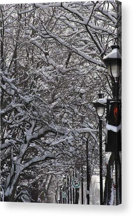 Snow Acrylic Print featuring the photograph Snowy Way by Frederico Borges