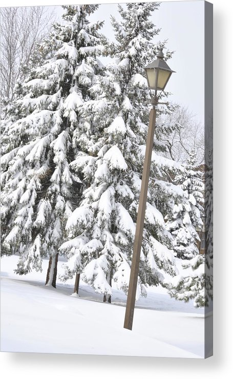 Snow Acrylic Print featuring the photograph The Lamp And The Tree by Frederico Borges