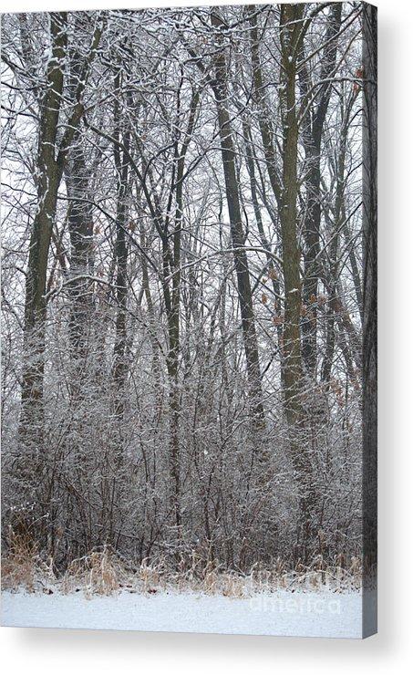 Winter Acrylic Print featuring the photograph Winter In The Heartland 8 by Deborah Smolinske