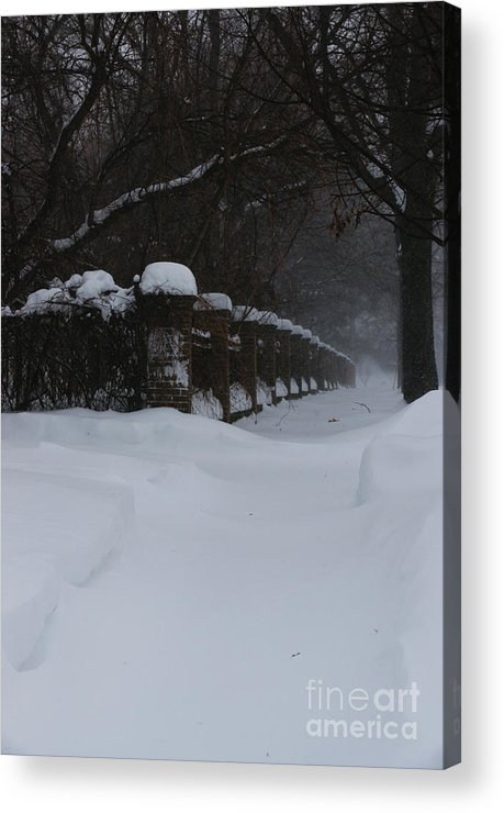 Winter Acrylic Print featuring the photograph Winter Walk by Linda Shafer