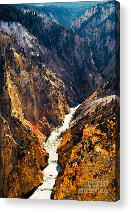 Yellowstone Acrylic Print featuring the photograph Yellowstone River by Kathy McClure