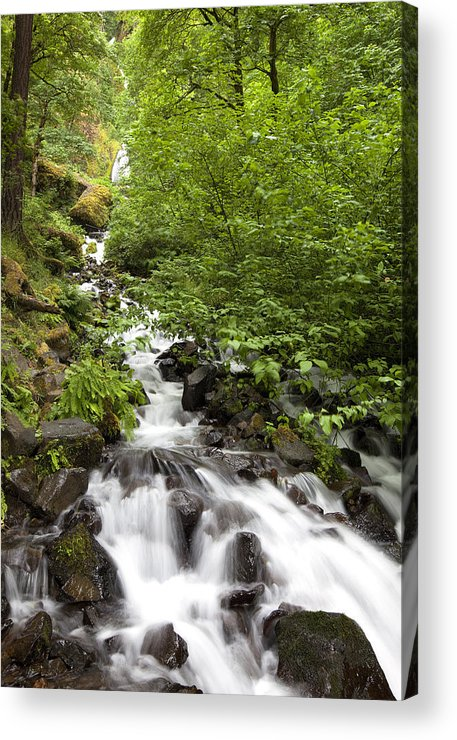 Waterfall Acrylic Print featuring the photograph The Long View by John Gregg