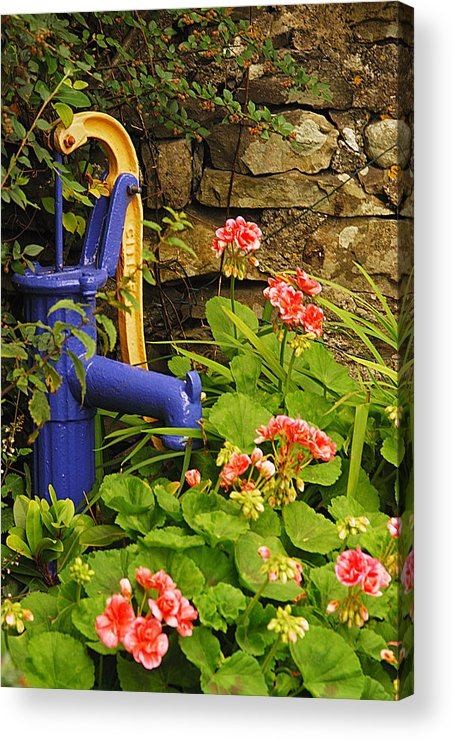 Cartmel Acrylic Print featuring the photograph Village Pump by Peter Jenkins